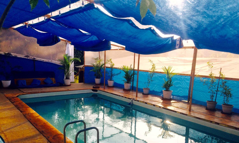 fluisymmetry watsu therapy pool sunset agonda Goa